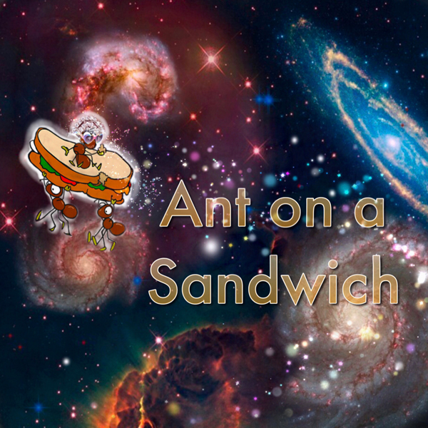 Ant on a Sandwich